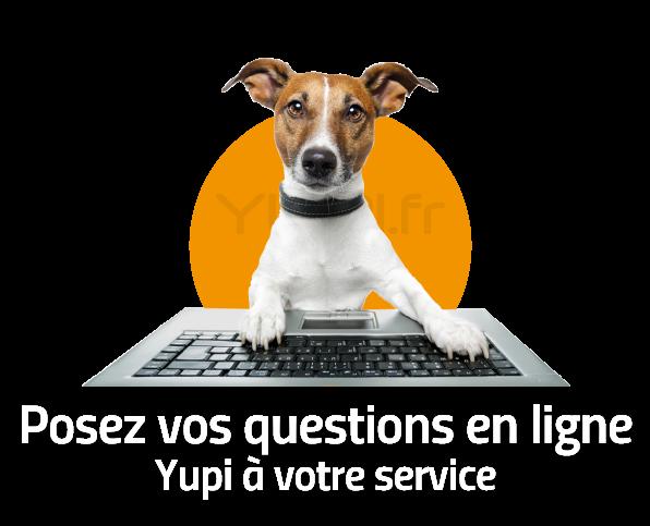 Chat online yupi.fr